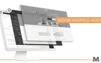 Step 2: Working WordPress Website